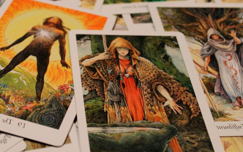 Wild Wood Tarot (Таро Дикого Леса).