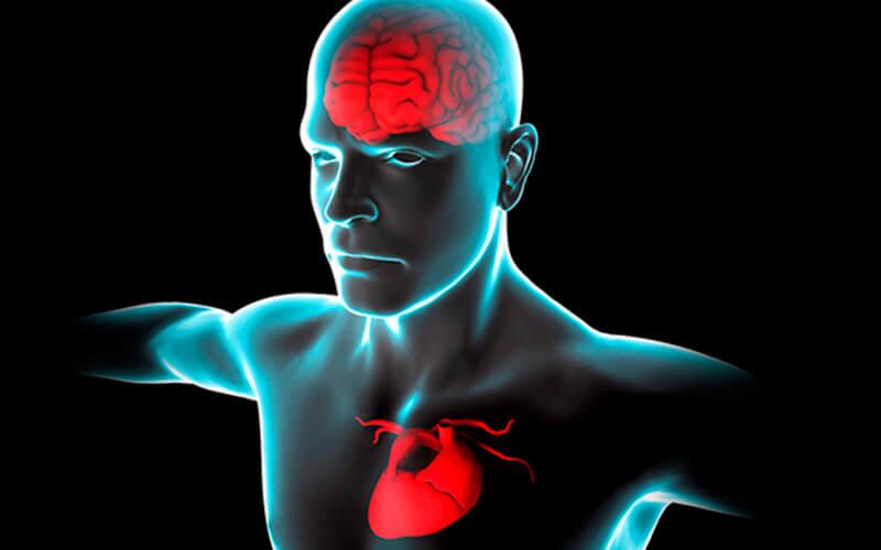 Психосоматика ишемии мозга