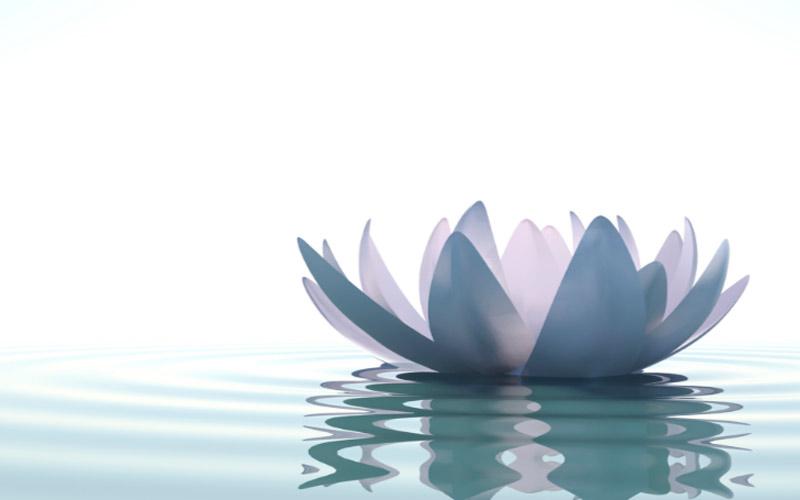 Использование медитации Шри Ауробиндо