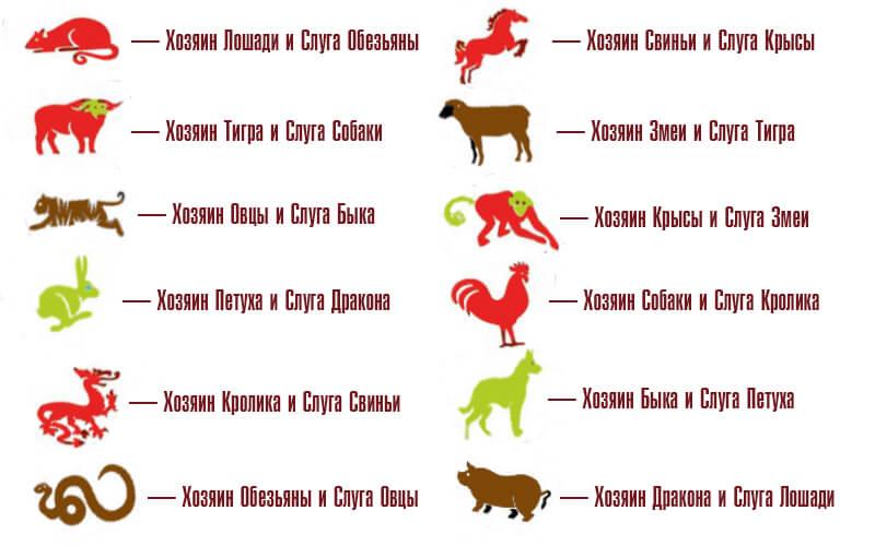 лучшей он лошадь она дракон совместимость множество видов